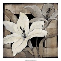 "Dramatic Lily Grid I by Timothy O'Toole - 20"" x 20"""