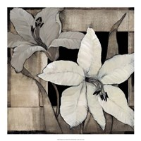 "Dramatic Lily Grid II by Timothy O'Toole - 20"" x 20"""