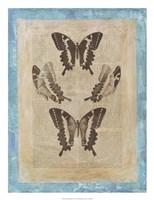 Bookplate Butterflies I Framed Print