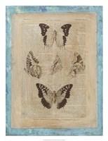 Bookplate Butterflies IV Framed Print
