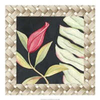 "Midnight Garden I by Megan Meagher - 20"" x 20"""
