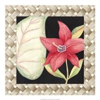 "Midnight Garden II by Megan Meagher - 20"" x 20"""