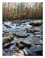 """Porter's Creek II by Danny Head - 20"""" x 26"""""""