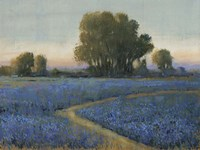 Blue Bonnet Field I by Timothy O'Toole - various sizes