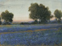 Blue Bonnet Field II by Timothy O'Toole - various sizes