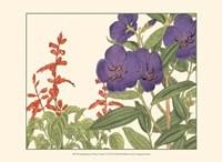 Small Japanese Flower Garden VI Fine Art Print