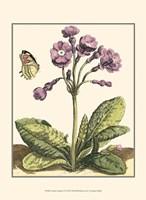 Garden Vignette I Fine Art Print