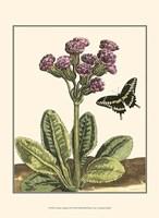 """Garden Vignette II by Johann Derby - 10"""" x 13"""""""