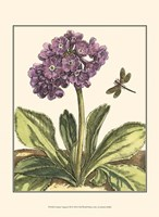 """Garden Vignette III by Johann Derby - 10"""" x 13"""""""