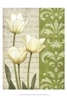 "White Tulips by Matt Patterson - 13"" x 19"""