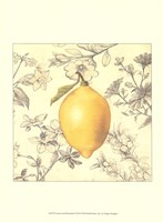 Lemon and Botanicals Fine Art Print