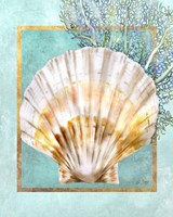 Scallop Shell and Coral Fine Art Print