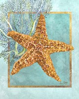 Starfish and Coral Fine Art Print