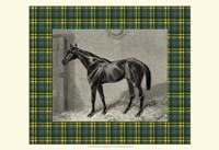 Equestrian Plaid II Fine Art Print