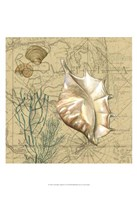 """Coastal Map Collage IV by Vision Studio - 13"""" x 19"""""""