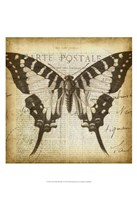 """Carte Postale Butterfly I by Jennifer Goldberger - 13"""" x 19"""""""