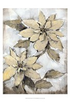 "Poinsettia Study I by Timothy O'Toole - 13"" x 19"""