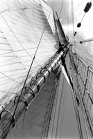 Set Sail II Fine Art Print
