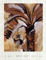 Havana Palm II Fine Art Print