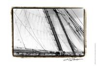 "Undersail III by Laura Denardo - 19"" x 13"", FulcrumGallery.com brand"