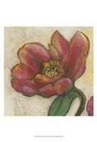 """Tulip Poplar I by Jennifer Goldberger - 13"""" x 19"""""""