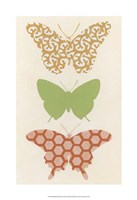 Butterfly Patterns III Framed Print