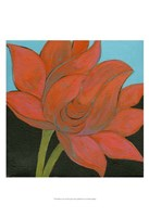 "13"" x 19"" Lotus Pictures"