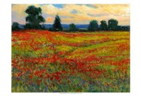 """Red Field I by Timothy O'Toole - 19"""" x 13"""""""