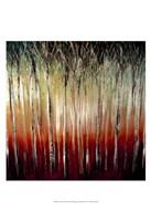 """Sunset by Danielle Harrington - 13"""" x 19"""""""