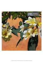 Plumeria & Postage I Fine Art Print