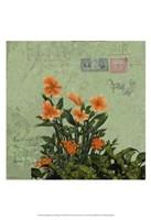 Orange Blooms & Postage I Fine Art Print