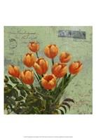 Orange Blooms & Postage II Fine Art Print