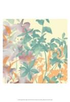 Graphic Bloom Collage I Fine Art Print
