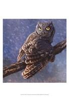 Owl in Winter I Fine Art Print