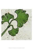 Planta Green VI Fine Art Print