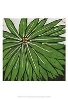 Planta Green VIII Fine Art Print