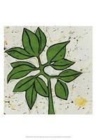 Planta Green IX Fine Art Print