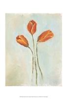 Painted Tulips II Fine Art Print