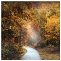 "October Trail by Jessica Jenney - 25"" x 25"""