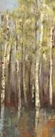 Forest Whisper II Fine Art Print