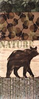 Nature Trail IV Framed Print