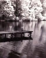 Mint Springs Lake BW V Fine Art Print