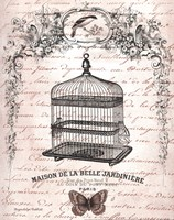 French Birdcage II Fine Art Print