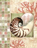 "Mosaic Shell Collage I - mini by Paul Brent - 11"" x 14"""