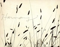 Grass Harmony Fine Art Print