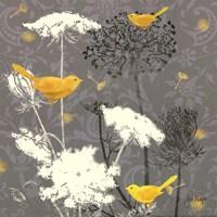 Gray Meadow Lace II Framed Print