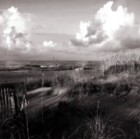 "Dunes II Sq. BW by Alan Hausenflock - 12"" x 12"""