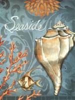 "Seaside Conch by Sydney Wright - 12"" x 16"""