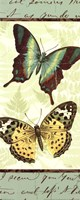 "Butterfly Patchwork I by Pela Studio - 8"" x 20"""