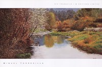 Ro Tranquilo I Fine Art Print